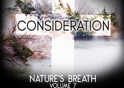 Nature's Breath: Consideration
