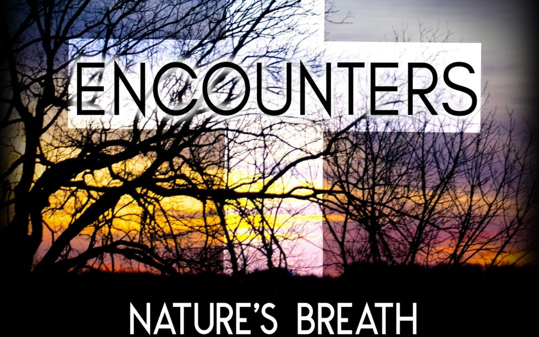 Nature's Breath: Encounters
