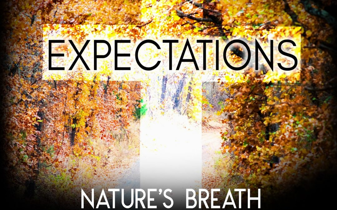Nature's Breath: Expectations